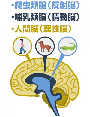 人間の三大意識